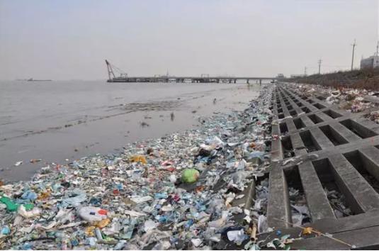 非法抛入长江的垃圾给水体造成严重污染